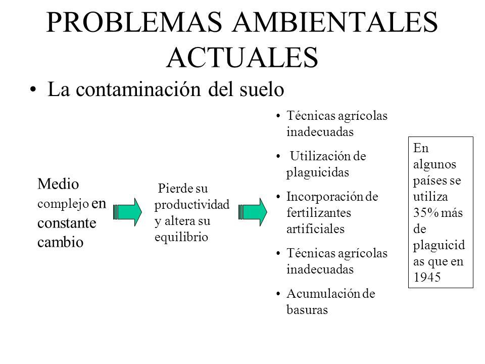 PROBLEMAS AMBIENTALES ACTUALES La contaminación del suelo Medio complejo en constante cambio Pierde su productividad y altera su equilibrio Técnicas a