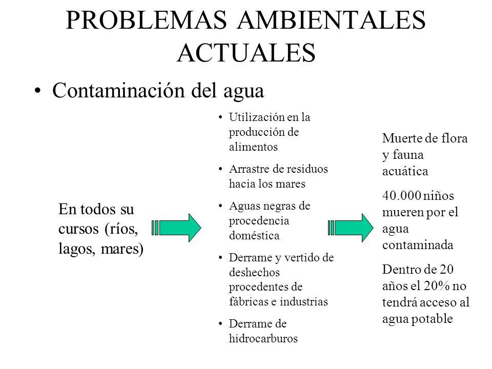 PROBLEMAS AMBIENTALES ACTUALES Contaminación del agua En todos su cursos (ríos, lagos, mares) Utilización en la producción de alimentos Arrastre de re