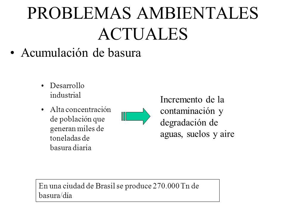 PROBLEMAS AMBIENTALES ACTUALES Acumulación de basura Desarrollo industrial Alta concentración de población que generan miles de toneladas de basura di