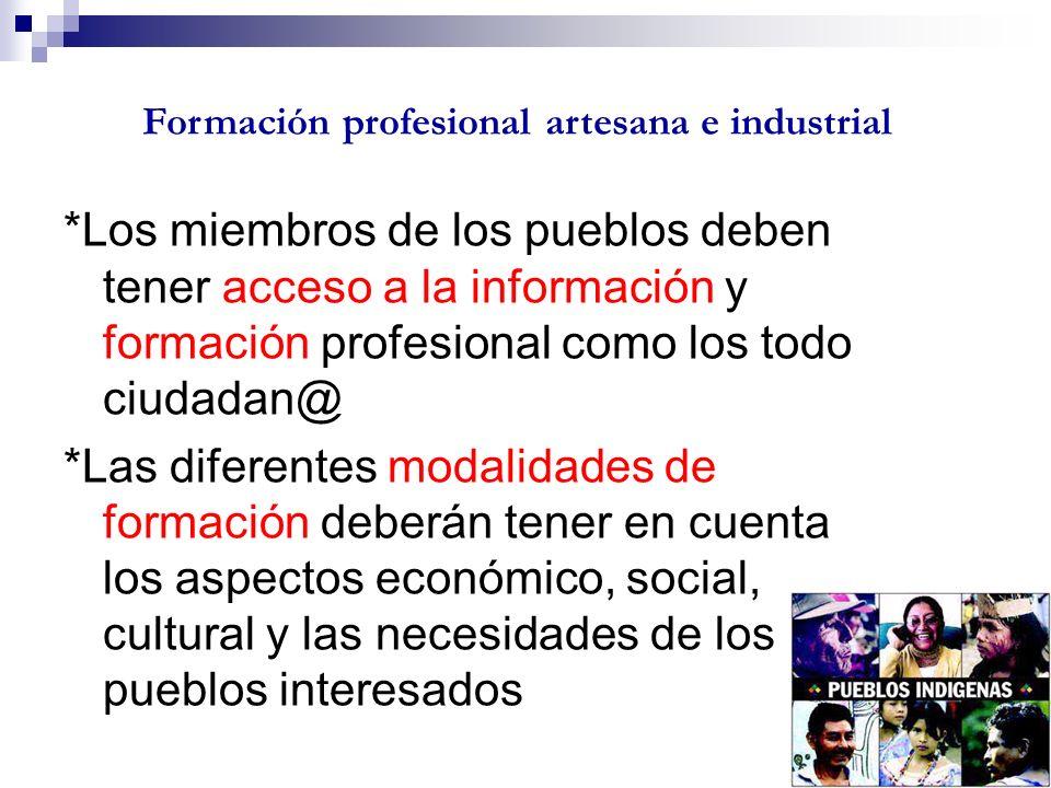*Los miembros de los pueblos deben tener acceso a la información y formación profesional como los todo ciudadan@ *Las diferentes modalidades de formac