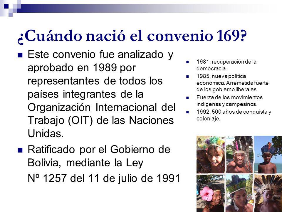 ¿Cuándo nació el convenio 169? Este convenio fue analizado y aprobado en 1989 por representantes de todos los países integrantes de la Organización In
