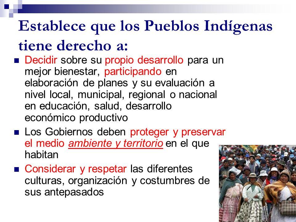 Establece que los Pueblos Indígenas tiene derecho a: Decidir sobre su propio desarrollo para un mejor bienestar, participando en elaboración de planes