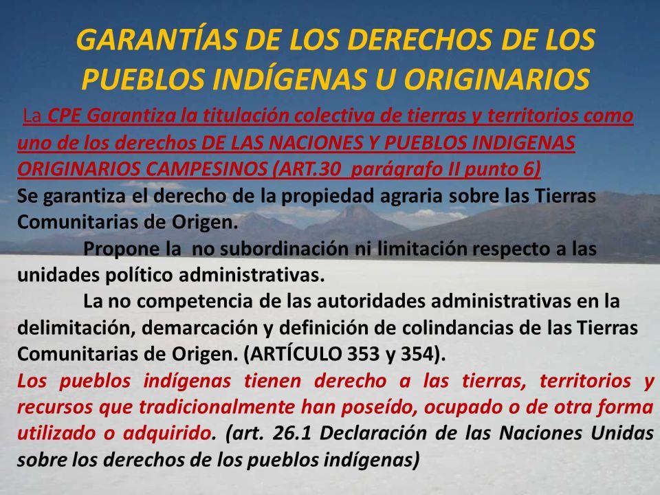 GARANTÍAS DE LOS DERECHOS DE LOS PUEBLOS INDÍGENAS U ORIGINARIOS La CPE Garantiza la titulación colectiva de tierras y territorios como uno de los der