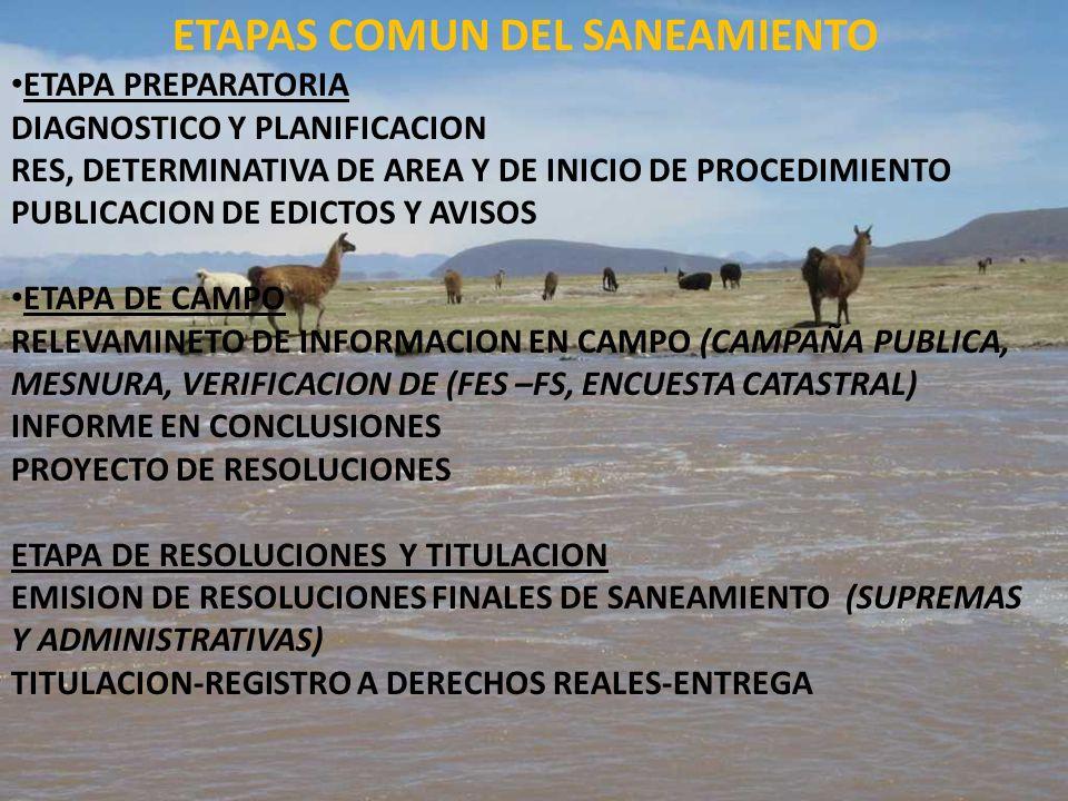 ETAPAS COMUN DEL SANEAMIENTO ETAPA PREPARATORIA DIAGNOSTICO Y PLANIFICACION RES, DETERMINATIVA DE AREA Y DE INICIO DE PROCEDIMIENTO PUBLICACION DE EDI