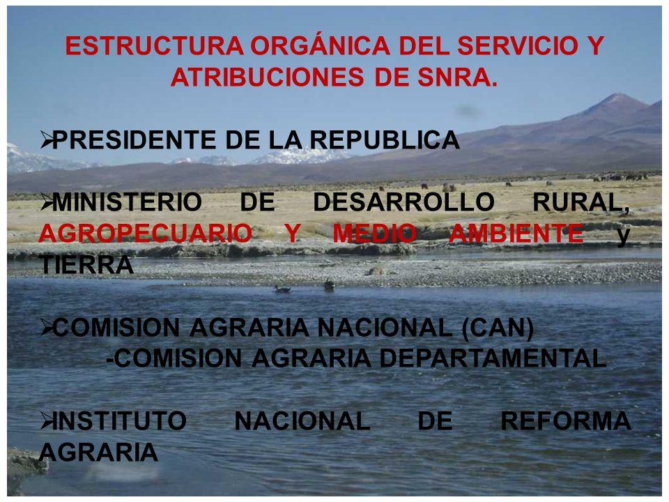 ESTRUCTURA ORGÁNICA DEL SERVICIO Y ATRIBUCIONES DE SNRA. PRESIDENTE DE LA REPUBLICA MINISTERIO DE DESARROLLO RURAL, AGROPECUARIO Y MEDIO AMBIENTE y TI