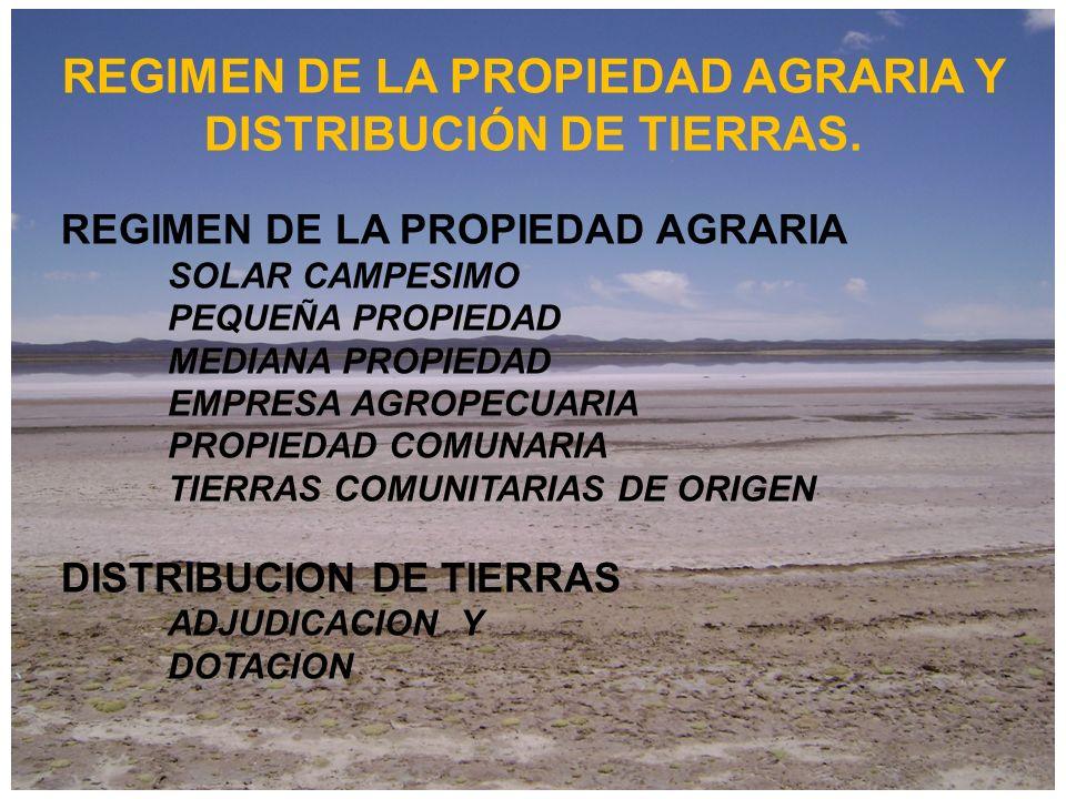 REGIMEN DE LA PROPIEDAD AGRARIA Y DISTRIBUCIÓN DE TIERRAS. REGIMEN DE LA PROPIEDAD AGRARIA SOLAR CAMPESIMO PEQUEÑA PROPIEDAD MEDIANA PROPIEDAD EMPRESA