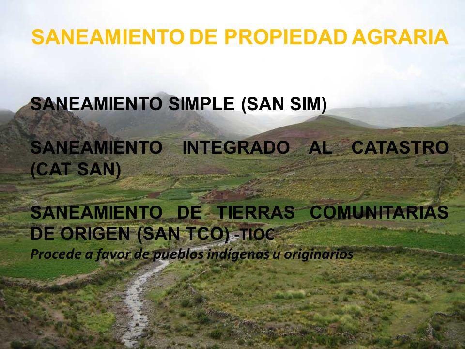 SANEAMIENTO DE PROPIEDAD AGRARIA SANEAMIENTO SIMPLE (SAN SIM) SANEAMIENTO INTEGRADO AL CATASTRO (CAT SAN) SANEAMIENTO DE TIERRAS COMUNITARIAS DE ORIGE