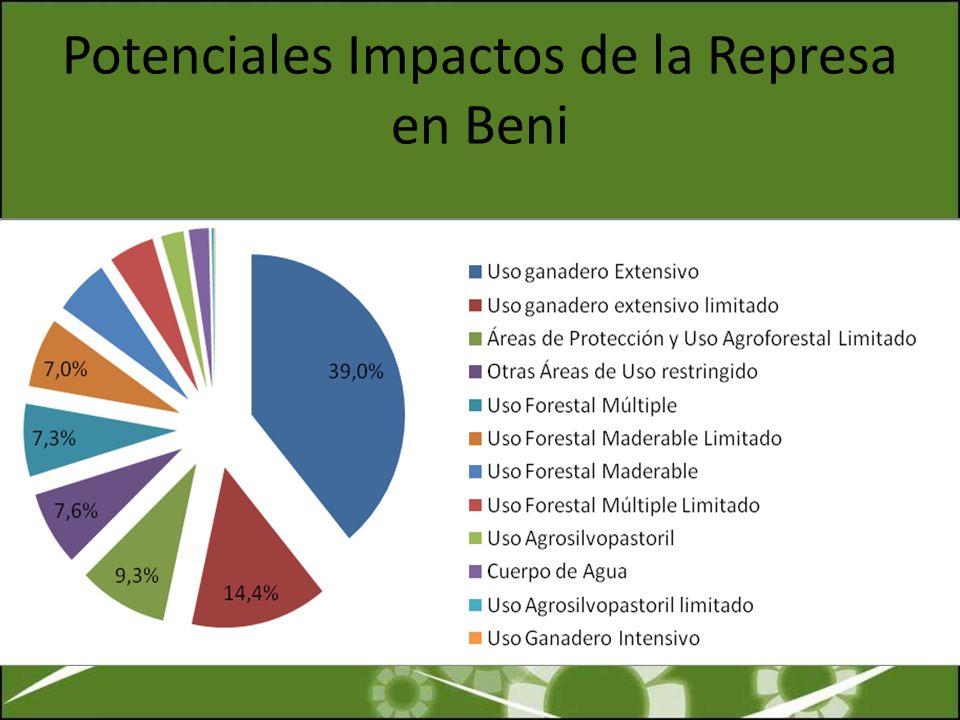 Potenciales Impactos de la Represa en Beni