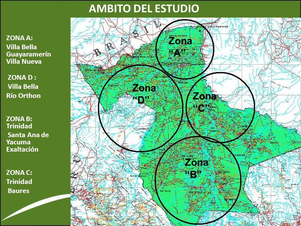 AMBITO DEL ESTUDIO ZONA A: Villa Bella Guayaramerín Villa Nueva ZONA D : Villa Bella Río Orthon ZONA B: Trinidad Santa Ana de Yacuma Exaltación ZONA C