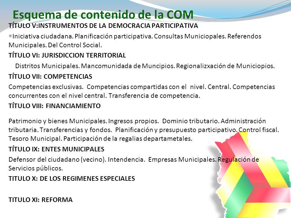 TÍTULO V:INSTRUMENTOS DE LA DEMOCRACIA PARTICIPATIVA Iniciativa ciudadana. Planificación participativa. Consultas Municiopales. Referendos Municipales