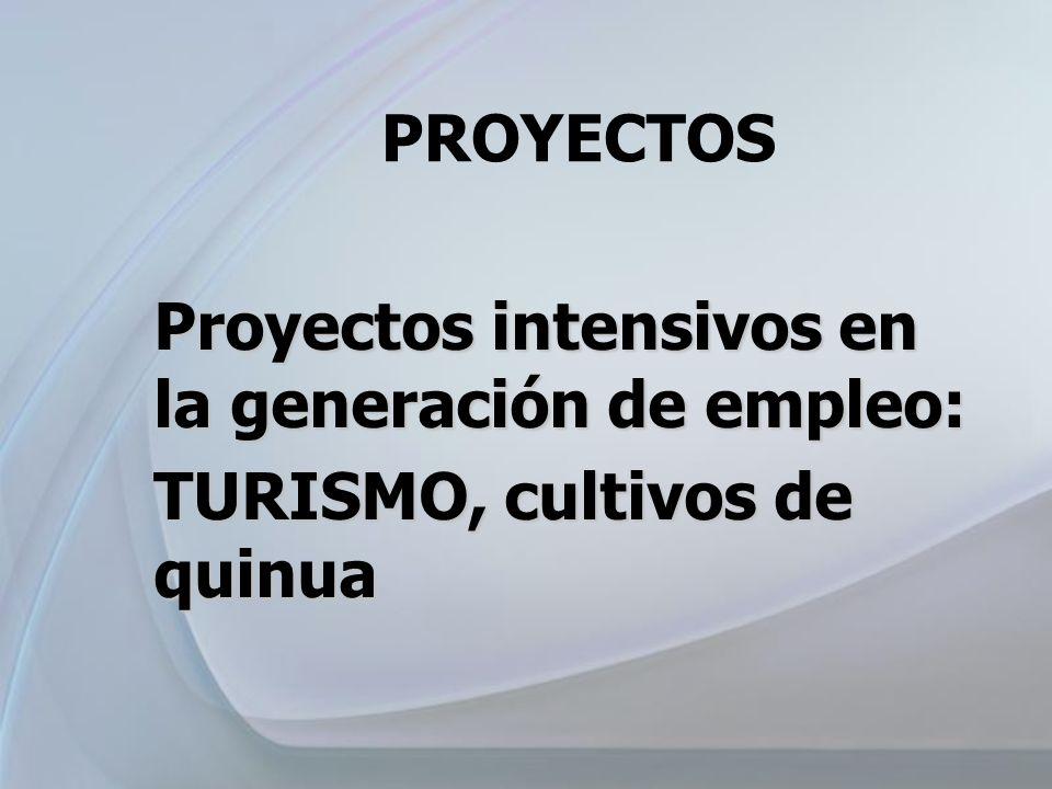 PROYECTOS Proyectos intensivos en la generación de empleo: TURISMO, cultivos de quinua