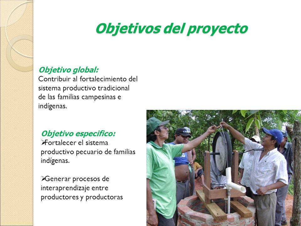 Objetivos del proyecto Objetivo global: Contribuir al fortalecimiento del sistema productivo tradicional de las familias campesinas e indígenas. Objet