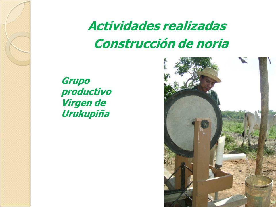 Actividades realizadas Construcción de noria Grupo productivo Virgen de Urukupiña
