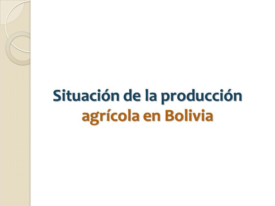 Situación de la producción agrícola en Bolivia