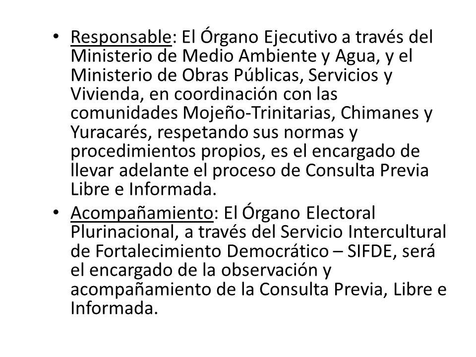 Responsable: El Órgano Ejecutivo a través del Ministerio de Medio Ambiente y Agua, y el Ministerio de Obras Públicas, Servicios y Vivienda, en coordin