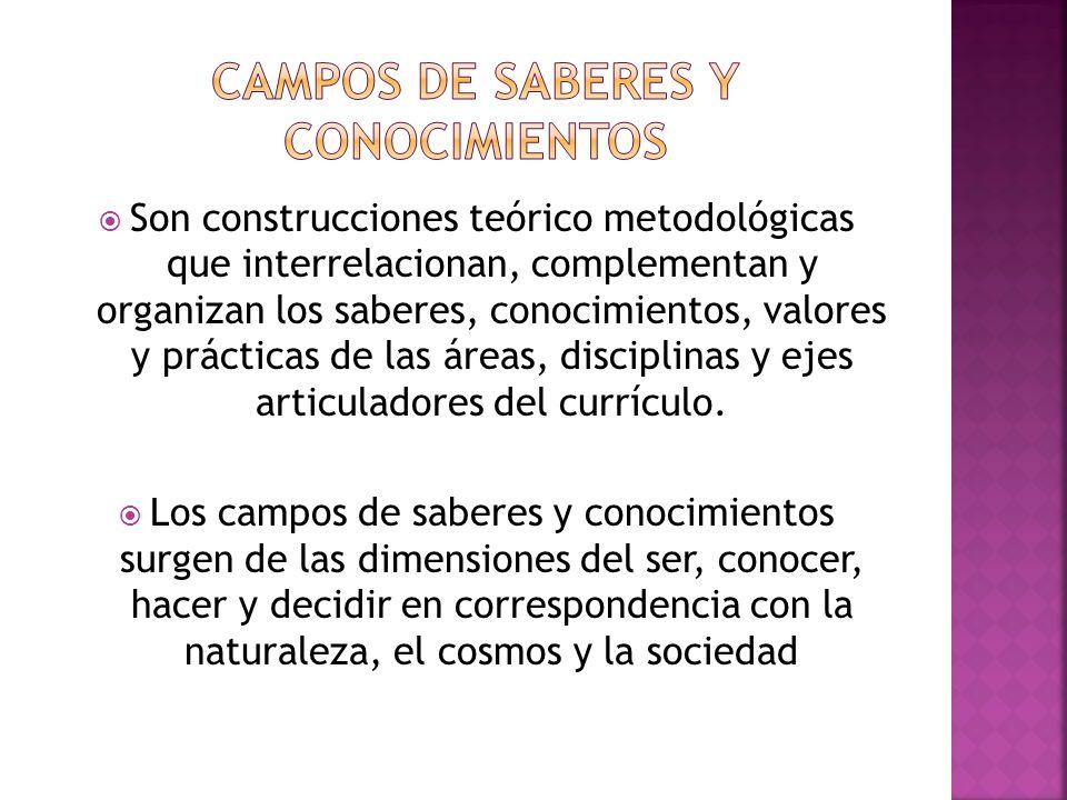 Son construcciones teórico metodológicas que interrelacionan, complementan y organizan los saberes, conocimientos, valores y prácticas de las áreas, disciplinas y ejes articuladores del currículo.