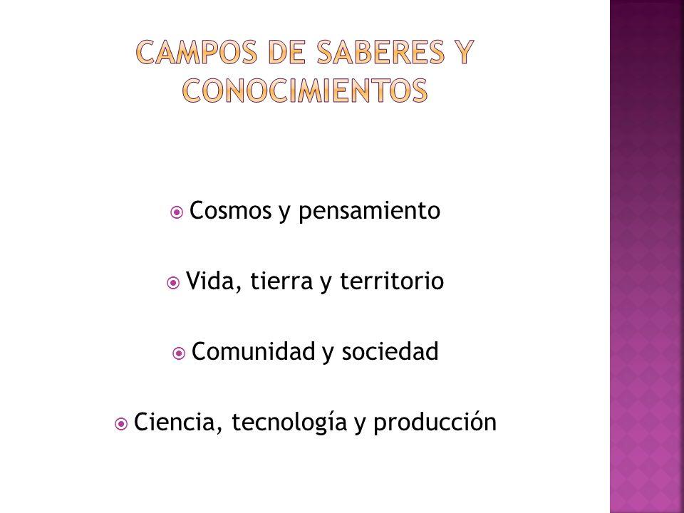 Cosmos y pensamiento Vida, tierra y territorio Comunidad y sociedad Ciencia, tecnología y producción