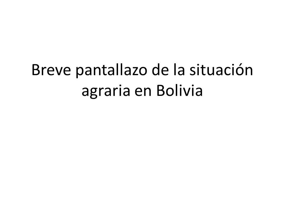 Breve pantallazo de la situación agraria en Bolivia