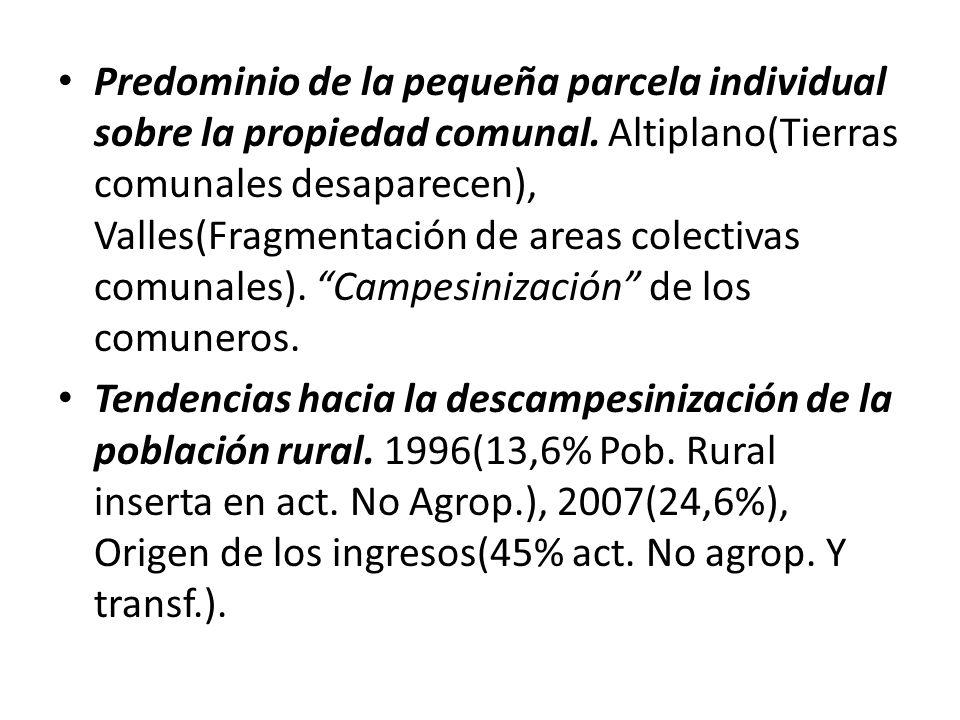 Gradual concentración de la producción avícola en Sta Cruz. Cochabamba(53,48%), 40,45%(Cbba), Tarija, Chuquisaca(5,7%). 2000- 2006(39,37% incremento C