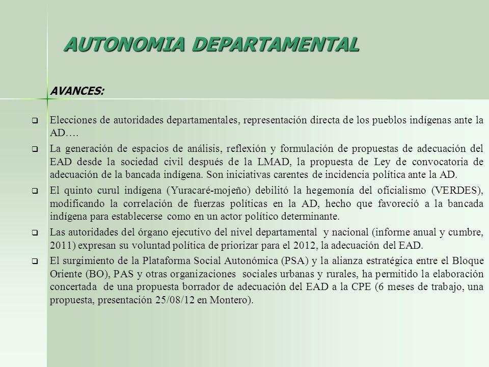 AUTONOMIA DEPARTAMENTAL AVANCES: Elecciones de autoridades departamentales, representación directa de los pueblos indígenas ante la AD…. La generación