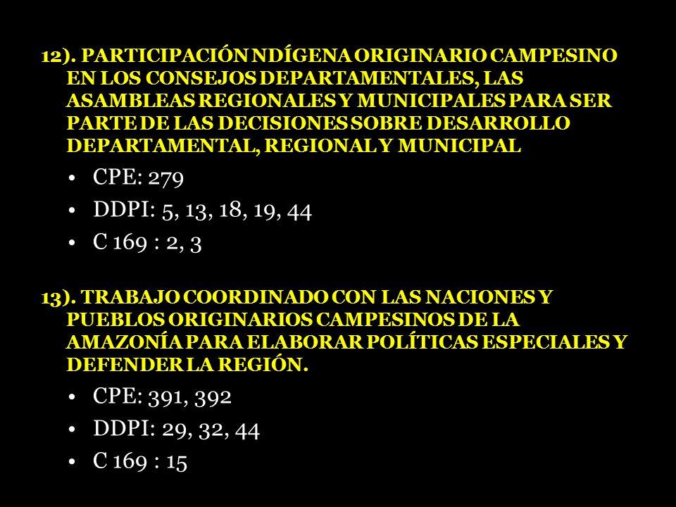 12). PARTICIPACIÓN NDÍGENA ORIGINARIO CAMPESINO EN LOS CONSEJOS DEPARTAMENTALES, LAS ASAMBLEAS REGIONALES Y MUNICIPALES PARA SER PARTE DE LAS DECISION