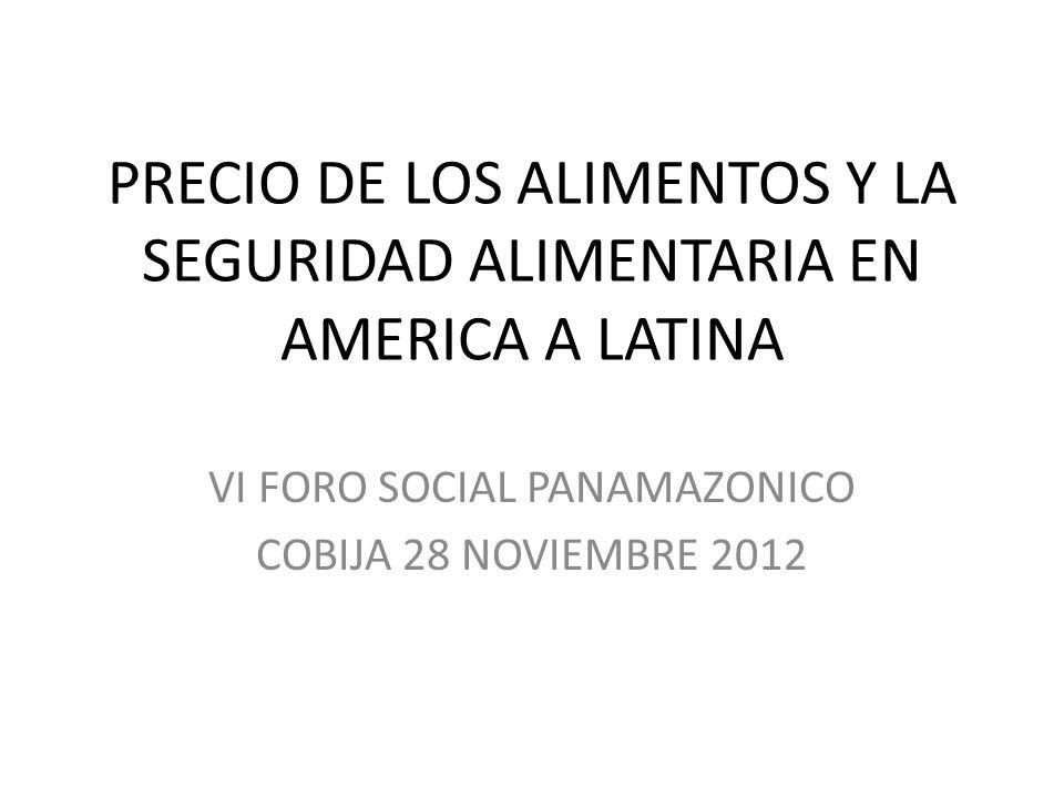 PRECIO DE LOS ALIMENTOS Y LA SEGURIDAD ALIMENTARIA EN AMERICA A LATINA VI FORO SOCIAL PANAMAZONICO COBIJA 28 NOVIEMBRE 2012