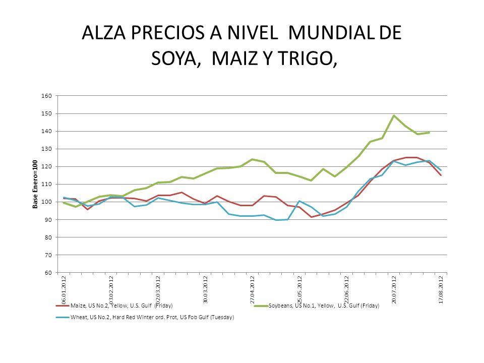 ALZA PRECIOS A NIVEL MUNDIAL DE SOYA, MAIZ Y TRIGO,