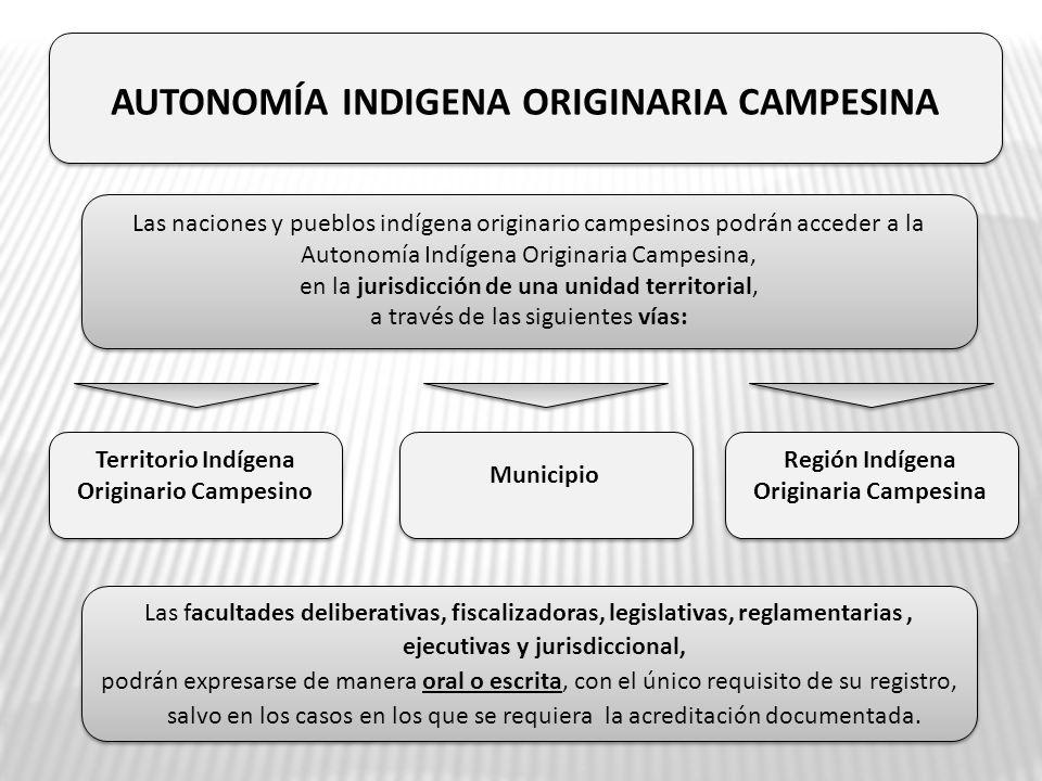 Las naciones y pueblos indígena originario campesinos podrán acceder a la Autonomía Indígena Originaria Campesina, en la jurisdicción de una unidad te