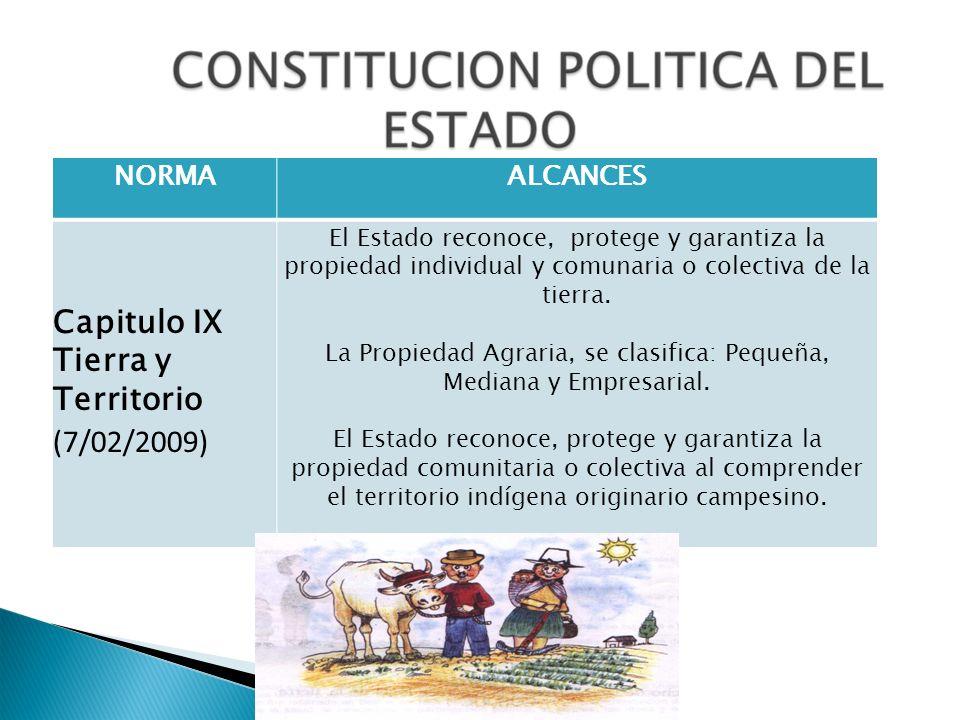 NORMAALCANCES Capitulo IX Tierra y Territorio (7/02/2009) El Estado reconoce, protege y garantiza la propiedad individual y comunaria o colectiva de l