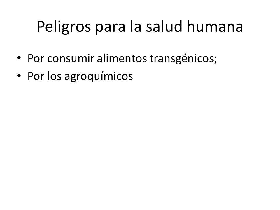 Peligros para la salud humana Por consumir alimentos transgénicos; Por los agroquímicos