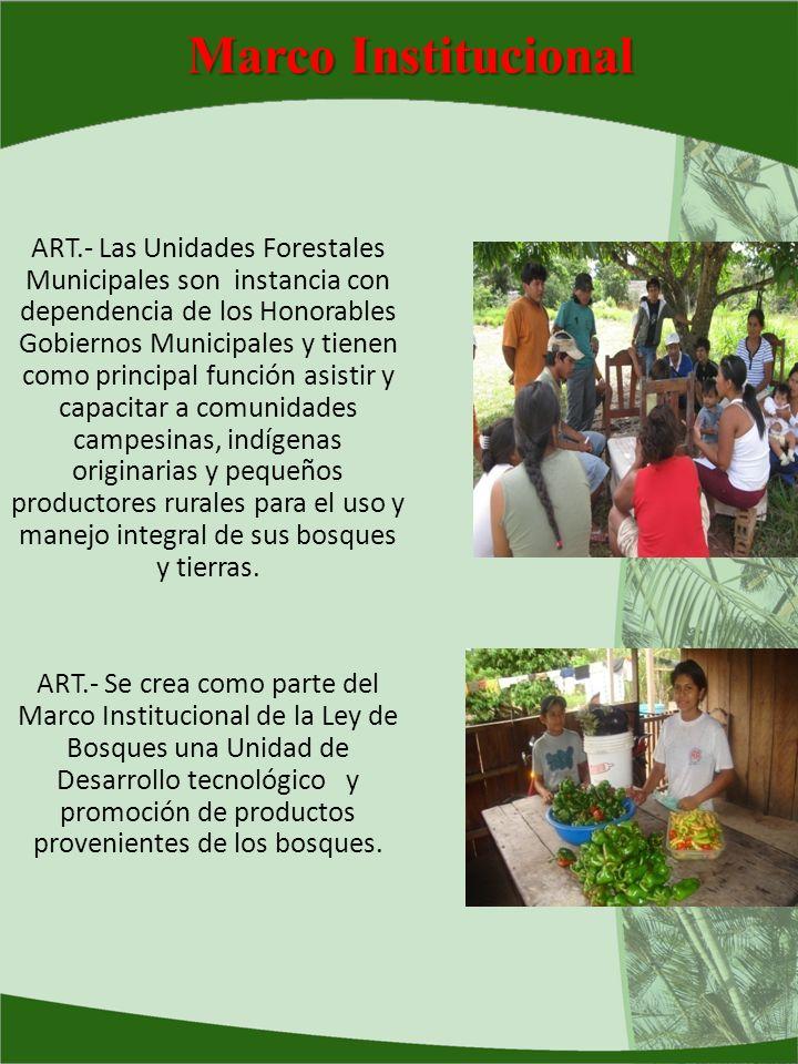 Marco Institucional ART.- Las Unidades Forestales Municipales son instancia con dependencia de los Honorables Gobiernos Municipales y tienen como prin