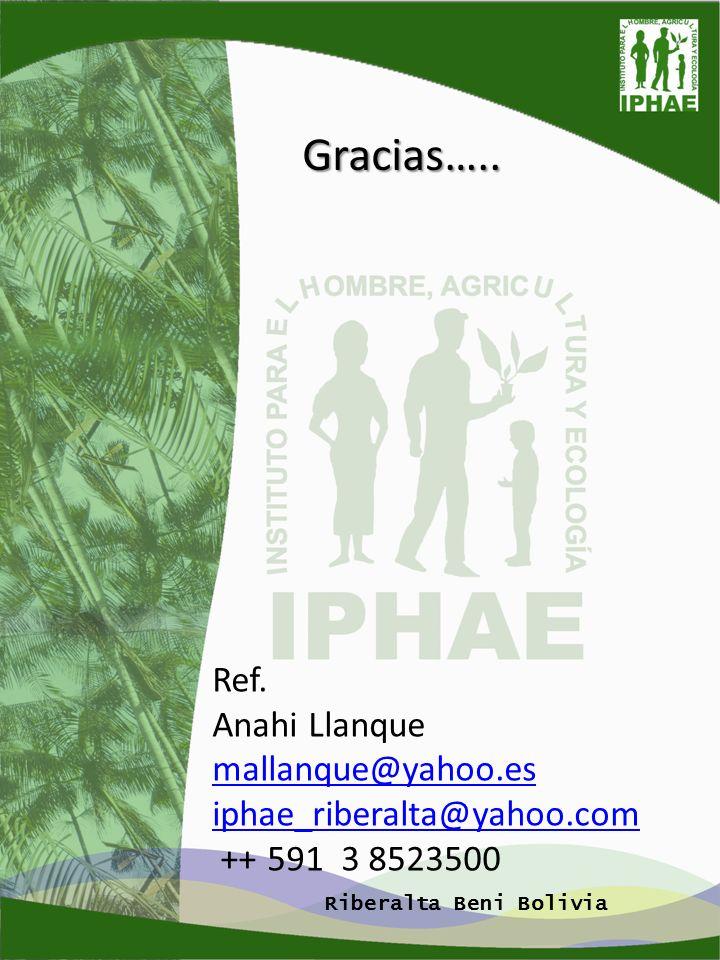 Gracias….. Ref. Anahi Llanque mallanque@yahoo.es mallanque@yahoo.es iphae_riberalta@yahoo.com ++ 591 3 8523500 Riberalta Beni Bolivia