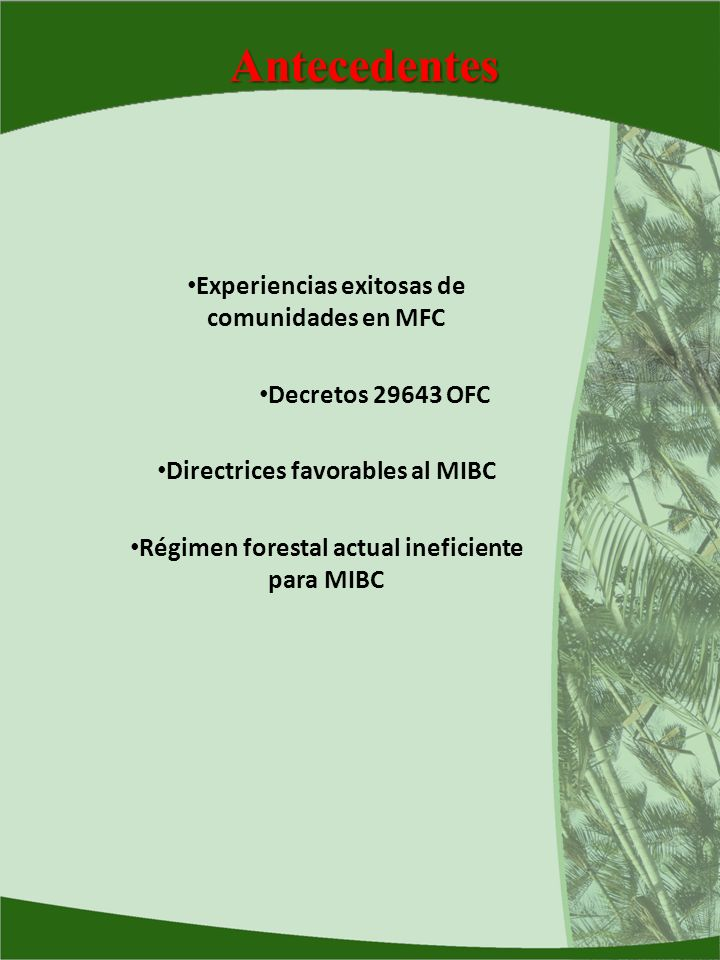 Antecedentes Experiencias exitosas de comunidades en MFC Decretos 29643 OFC Directrices favorables al MIBC Régimen forestal actual ineficiente para MI