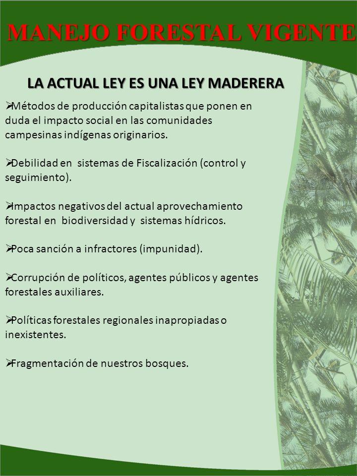 MANEJO FORESTAL VIGENTE Métodos de producción capitalistas que ponen en duda el impacto social en las comunidades campesinas indígenas originarios. De