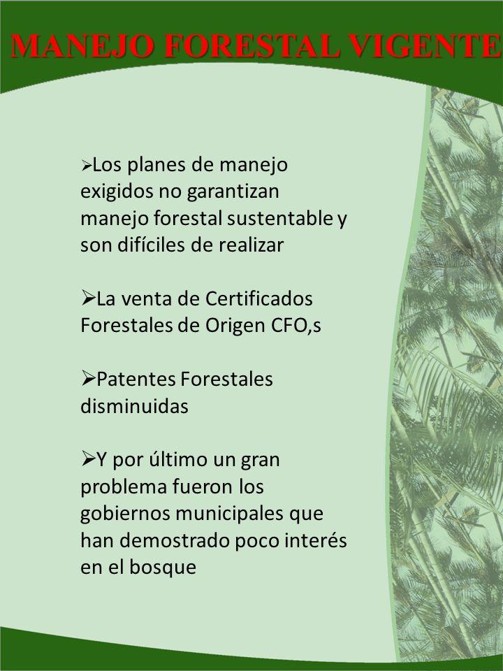 MANEJO FORESTAL VIGENTE Los planes de manejo exigidos no garantizan manejo forestal sustentable y son difíciles de realizar La venta de Certificados F