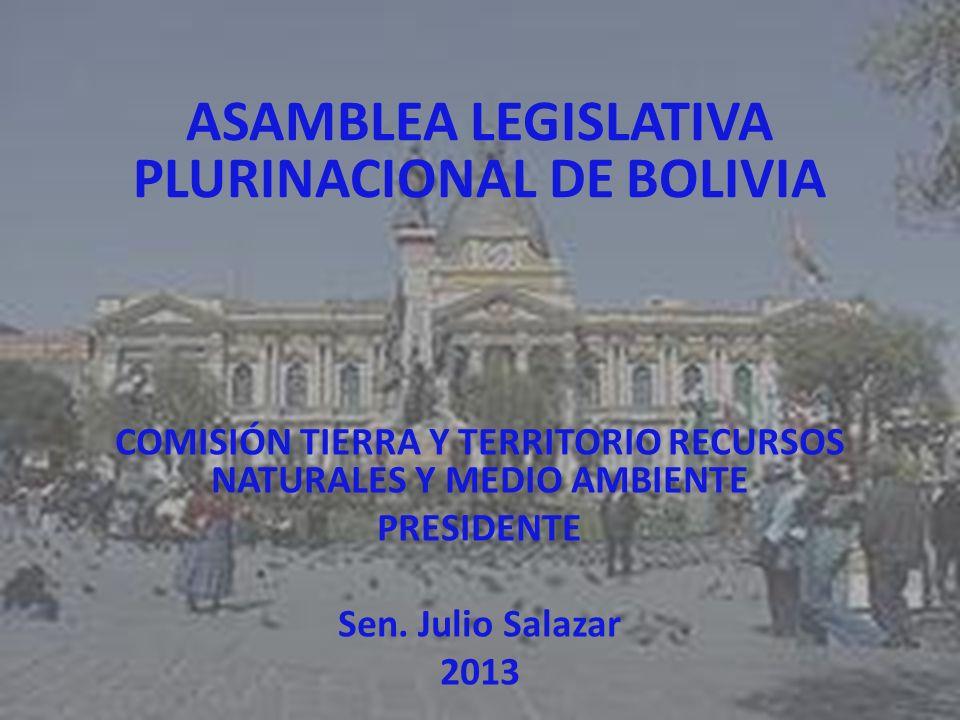 ASAMBLEA LEGISLATIVA PLURINACIONAL DE BOLIVIA COMISIÓN TIERRA Y TERRITORIO RECURSOS NATURALES Y MEDIO AMBIENTE PRESIDENTE Sen. Julio Salazar 2013
