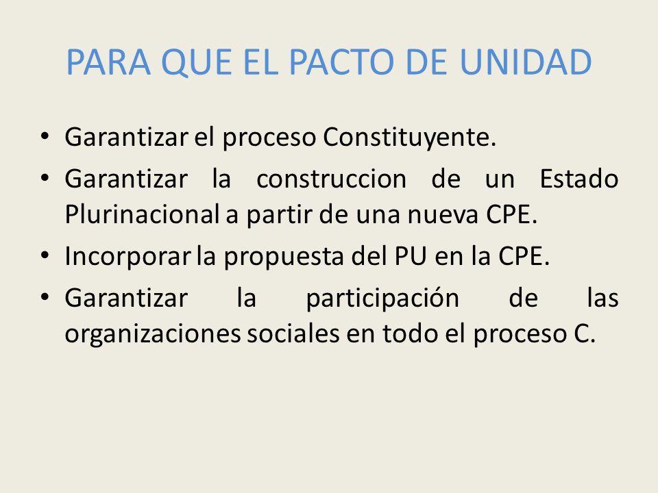 PARA QUE EL PACTO DE UNIDAD Garantizar el proceso Constituyente. Garantizar la construccion de un Estado Plurinacional a partir de una nueva CPE. Inco