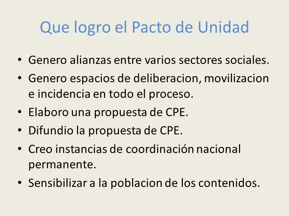 Que logro el Pacto de Unidad Genero alianzas entre varios sectores sociales. Genero espacios de deliberacion, movilizacion e incidencia en todo el pro