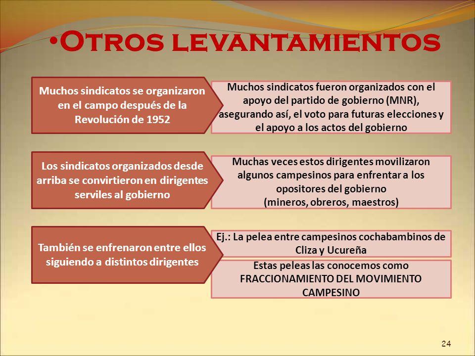 Estas peleas las conocemos como FRACCIONAMIENTO DEL MOVIMIENTO CAMPESINO Otros levantamientos Muchos sindicatos fueron organizados con el apoyo del pa