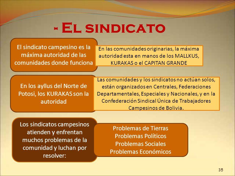 - El sindicato El sindicato campesino es la máxima autoridad de las comunidades donde funciona En las comunidades originarias, la máxima autoridad est