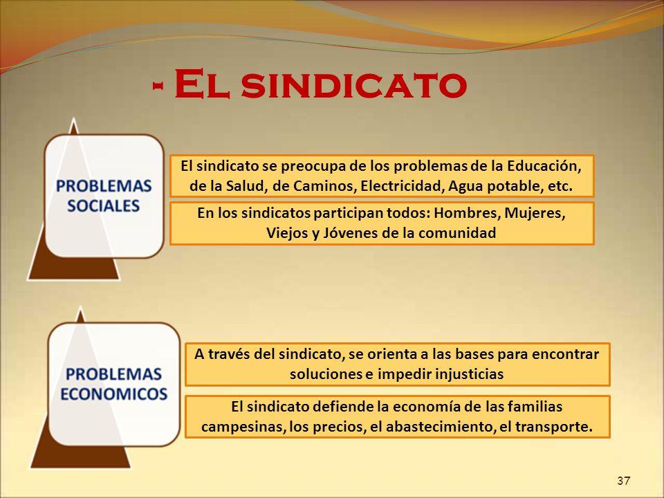 - El sindicato El sindicato se preocupa de los problemas de la Educación, de la Salud, de Caminos, Electricidad, Agua potable, etc. A través del sindi