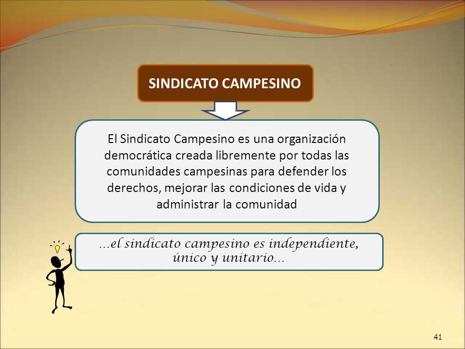 El Sindicato Campesino es una organización democrática creada libremente por todas las comunidades campesinas para defender los derechos, mejorar las