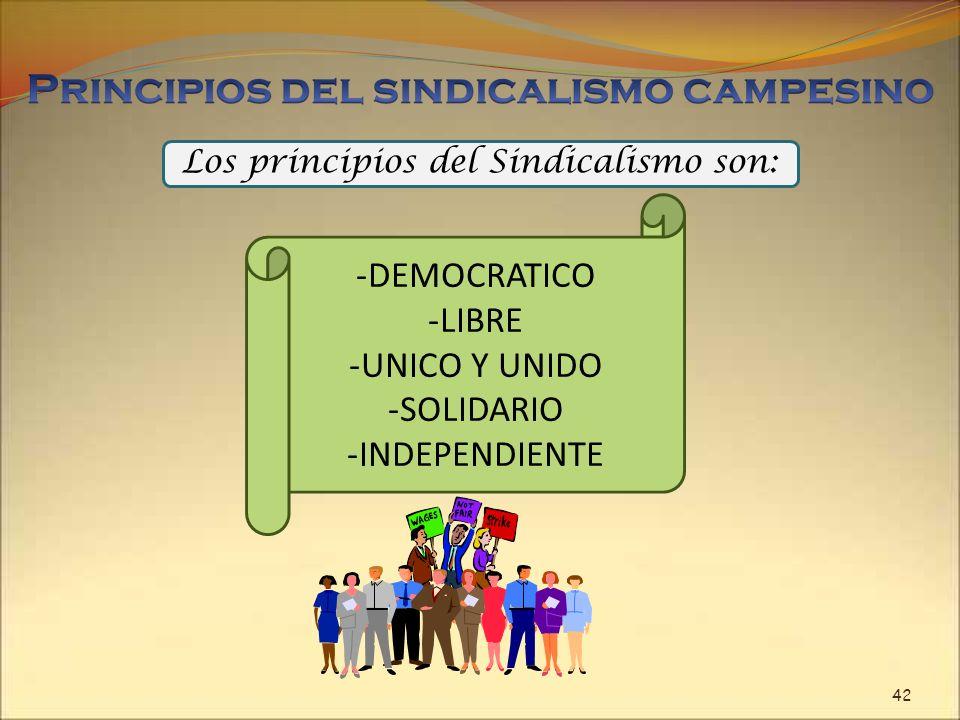 Los principios del Sindicalismo son: -DEMOCRATICO -LIBRE -UNICO Y UNIDO -SOLIDARIO -INDEPENDIENTE 42