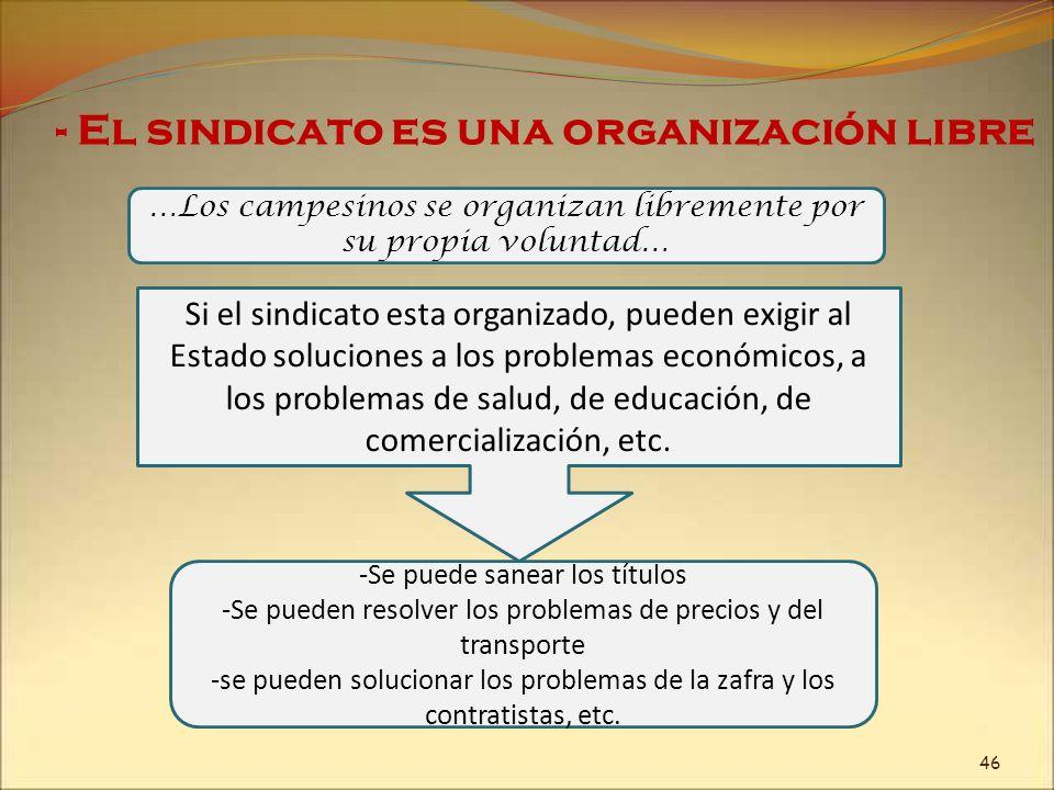 - El sindicato es una organización libre …Los campesinos se organizan libremente por su propia voluntad… -Se puede sanear los títulos -Se pueden resol
