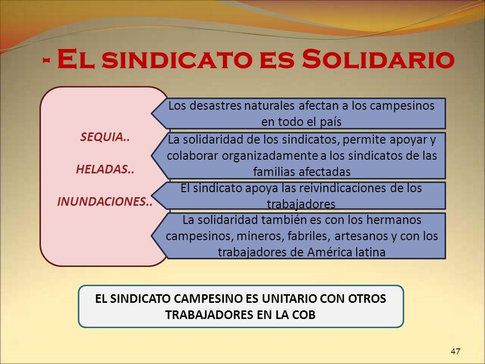- El sindicato es Solidario EL SINDICATO CAMPESINO ES UNITARIO CON OTROS TRABAJADORES EN LA COB SEQUIA.. HELADAS.. INUNDACIONES.. Los desastres natura