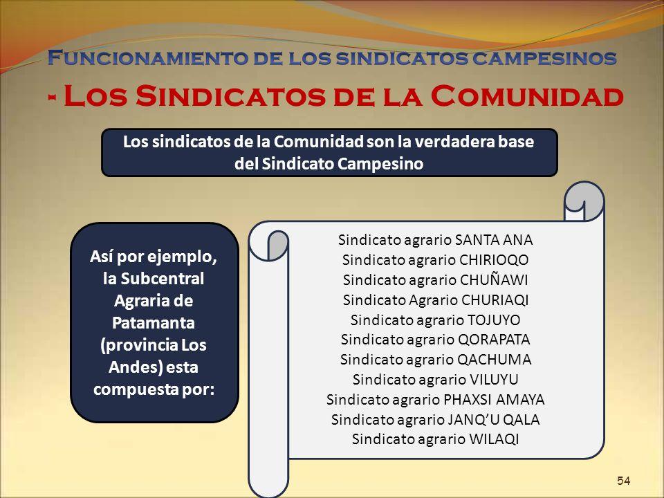 - Los Sindicatos de la Comunidad Los sindicatos de la Comunidad son la verdadera base del Sindicato Campesino Así por ejemplo, la Subcentral Agraria d