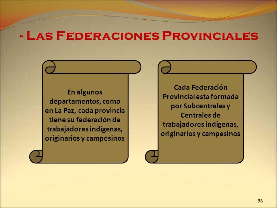 - Las Federaciones Provinciales 56 En algunos departamentos, como en La Paz, cada provincia tiene su federación de trabajadores indígenas, originarios