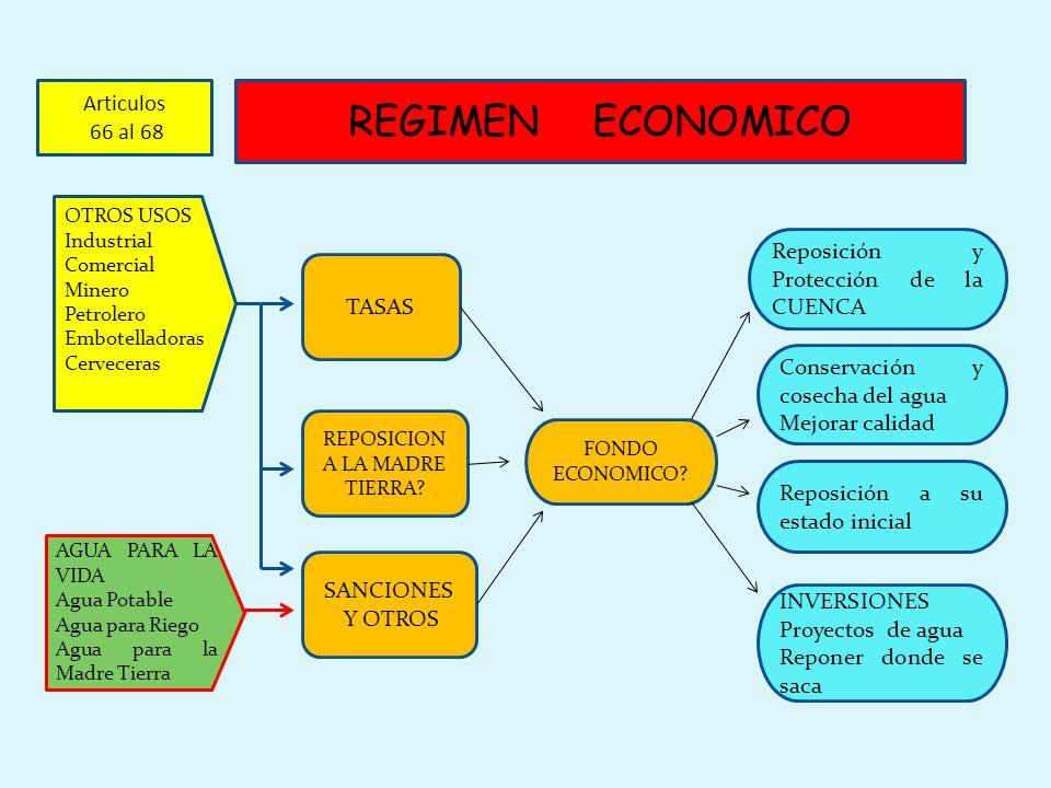 REGIMEN ECONOMICO TASAS REPOSICION A LA MADRE TIERRA? SANCIONES Y OTROS OTROS USOS Industrial Comercial Minero Petrolero Embotelladoras Cerveceras AGU