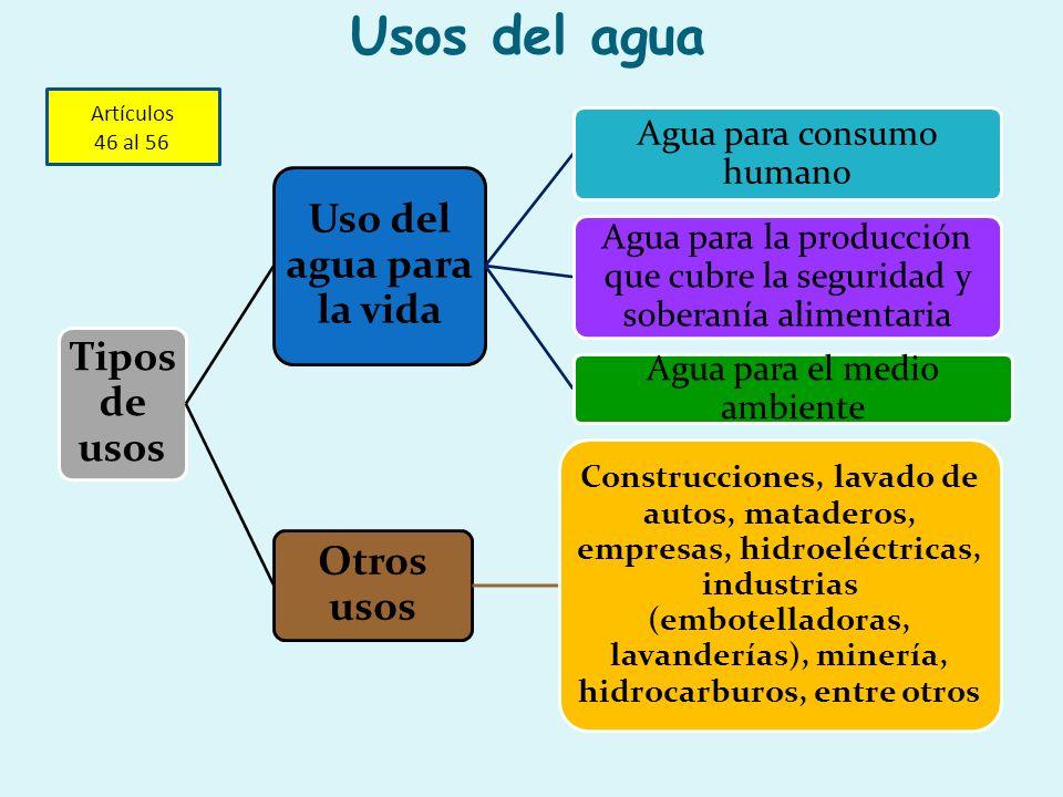 Tipos de usos Uso del agua para la vida Agua para consumo humano Agua para la producción que cubre la seguridad y soberanía alimentaria Agua para el m