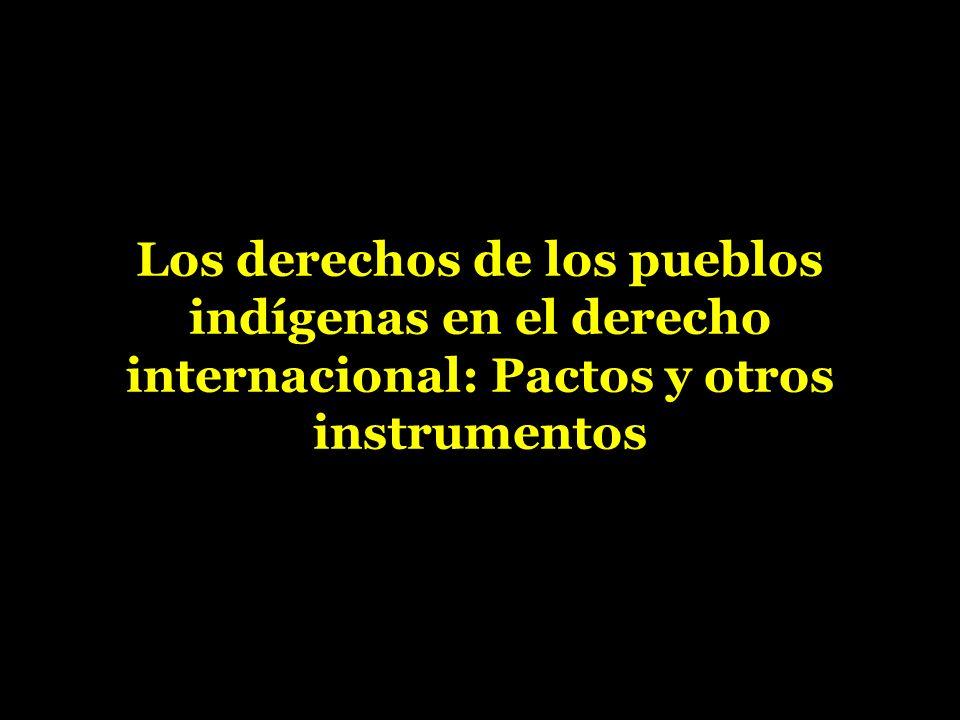 Los derechos de los pueblos indígenas en el derecho internacional: Pactos y otros instrumentos